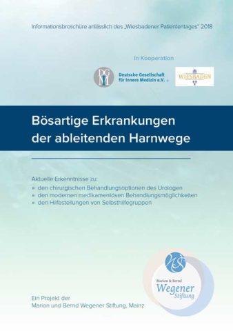 2018-Infobroschüre-WI